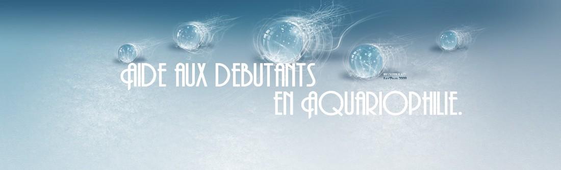Une aide pour les débutants qui possèdent un aquarium et des poissons